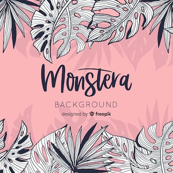 Colorless monstera leaves background