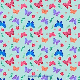 색상 나비 패턴