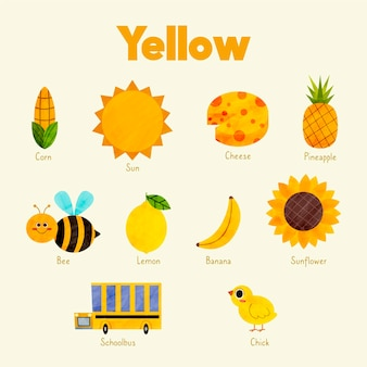 Colors and vocabulary set in english