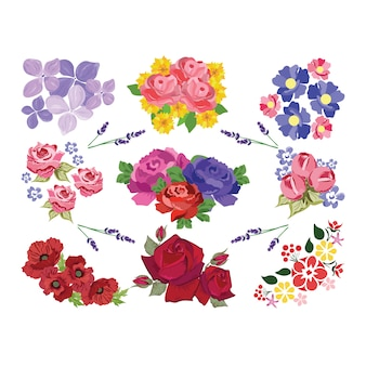 Coloured flowers collection