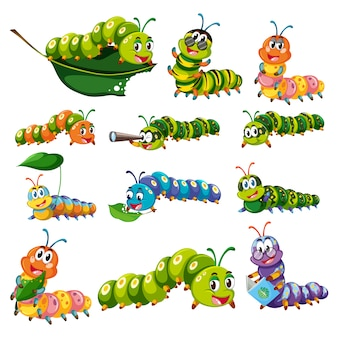 Coloured worms collection