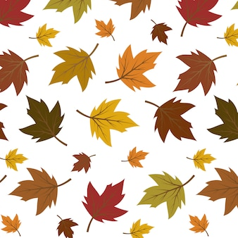 Colourful autumn leaves pattern isolated on white background