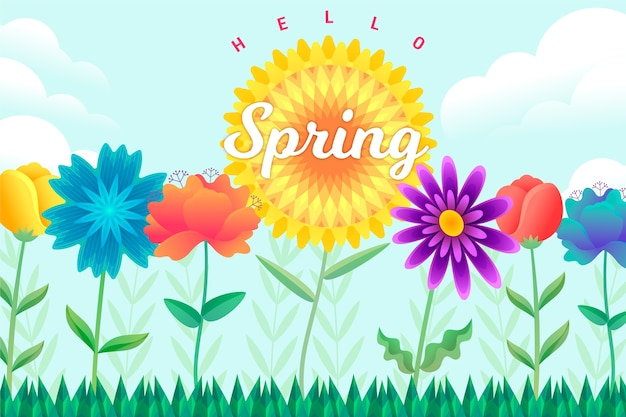 Colourful spring background with flowers
