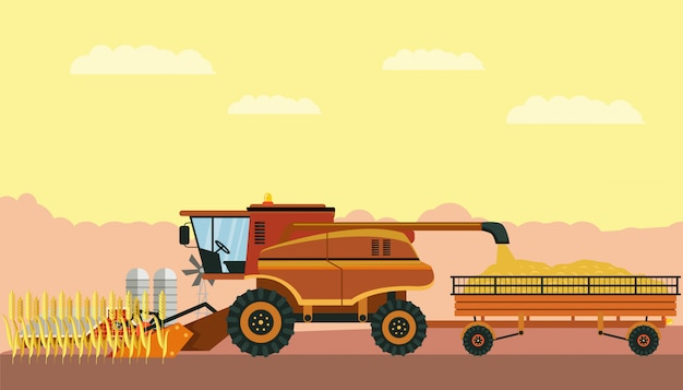 Combine harvester in field vector illustration