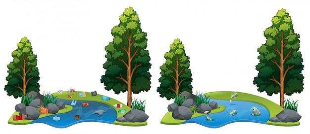 Сравнение между грязной и чистой речной стороной