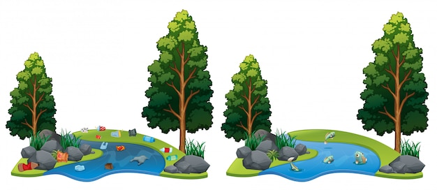Comparison between dirty and clean river side