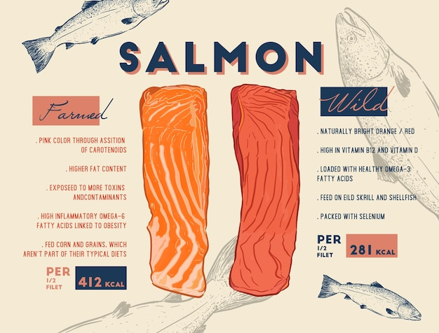 Comparison between wild and farmed salmon filet.