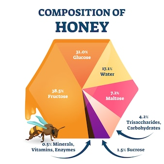 Composition of bee honey . labeled food structure scheme. educational percentage graphic with organic glucose, fructose, water and maltose as main fresh honeybee nutrition content. Premium Vector