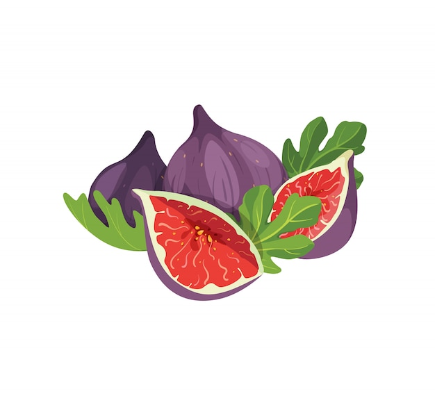 Composition of delicious figs isolated on white background. whole and cut fresh exotic sweet figs fruit with leaves element for product label, logo, print.