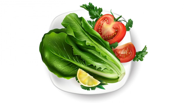Composition of fresh vegetables on a white plate.