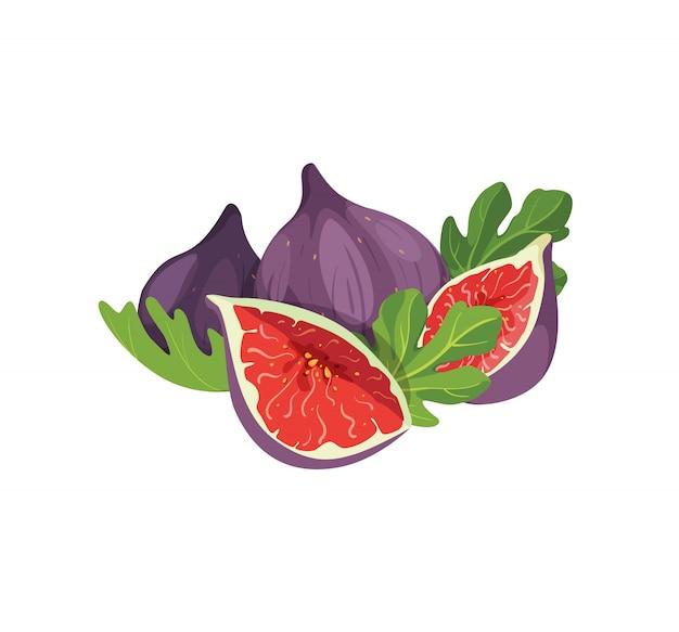 白い背景に分離されたおいしいイチジクの組成物。新鮮でエキゾチックな甘いイチジクの果実を丸ごとカットし、製品ラベル、ロゴ、プリントの葉の要素を入れます。