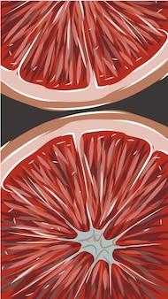 Композиция из двух ломтиков грейпфрута рисованной цитрусовых