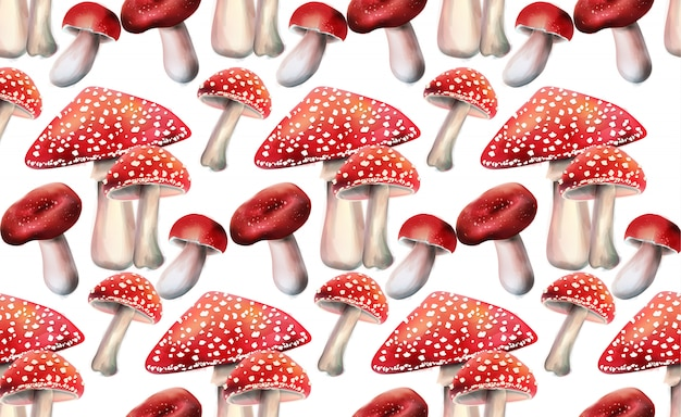 Composition of red mushrooms