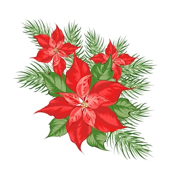 Composition of red poinsettia flower isolated over white .