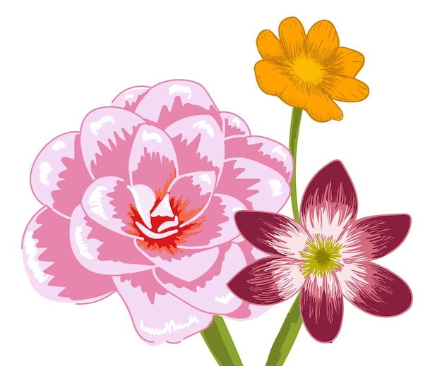 Composition of three different flowers. bermuda buttercup, glory of the snow and damask rose