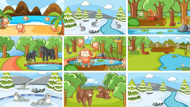 Набор композиций животных в дикой природе