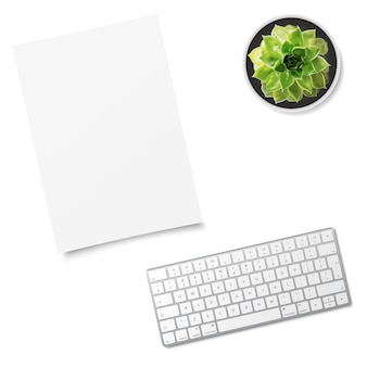 Computer keyboard, sheet of paper and succulent flower isolated on white background.