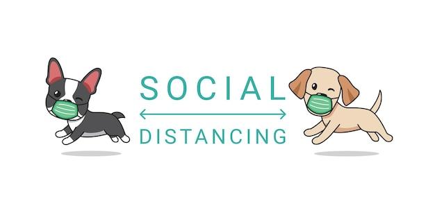 Концепция мультипликационного персонажа бостон-терьера и собаки лабрадора ретривера в защитной маске социального дистанцирования