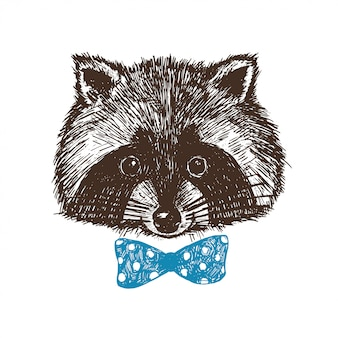 Concept hand drawn cute raccoon in bow-tie.