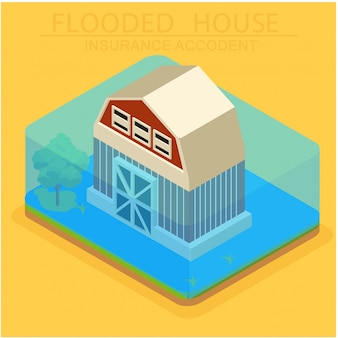 The concept of isometric insurance for house damage