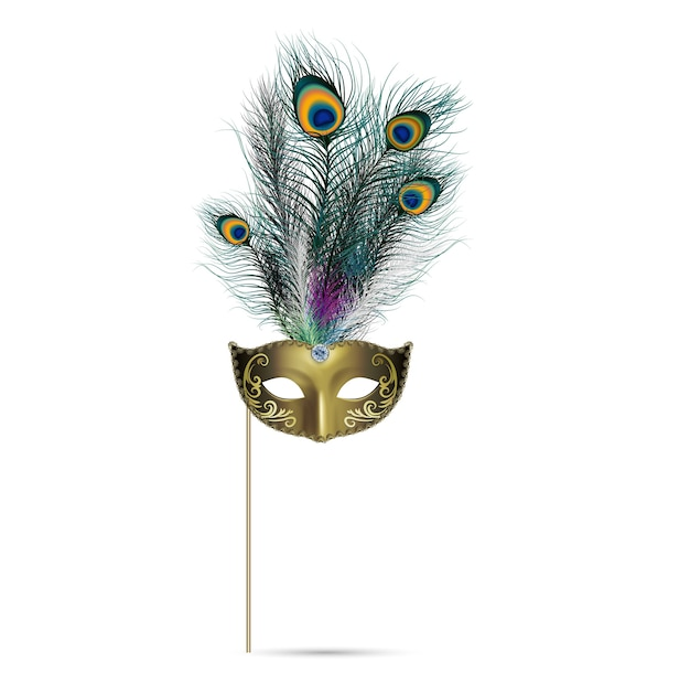 Concept of peacock feather on isolated background