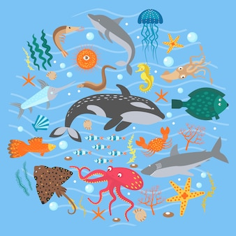 Concept set of cute sea animals fish