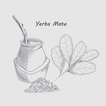 Concept of yerba mate drink. sketch drawing