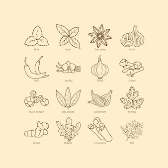 Condiments and spices line icons set
