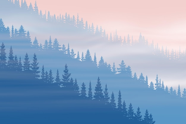 Coniferous forest in fog at dawn