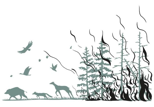 火の針葉樹林、野生動物。鹿、イノシシ、キツネ、野火から逃げる鳥。山火事の手描きグラフィックベクトルイラスト。白で隔離される平らなモノクロの図面。