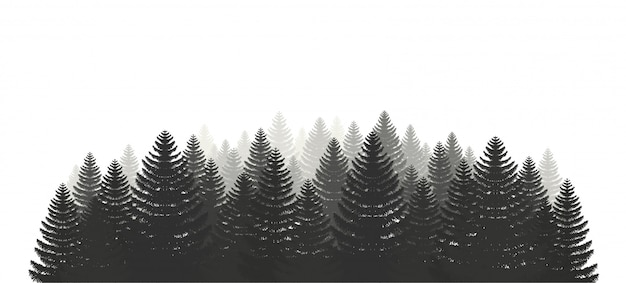 Coniferous pine forest set