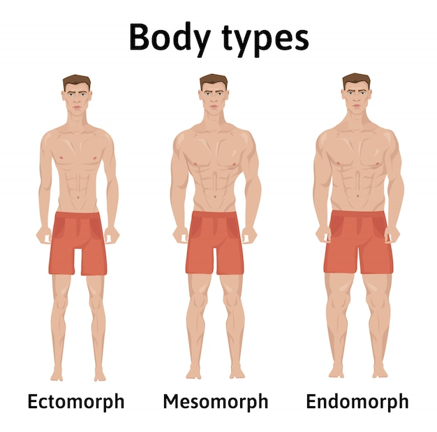 Constitution of human body. man body types. endomorph, ectomorph and mesomorph. athletic young men in shorts.