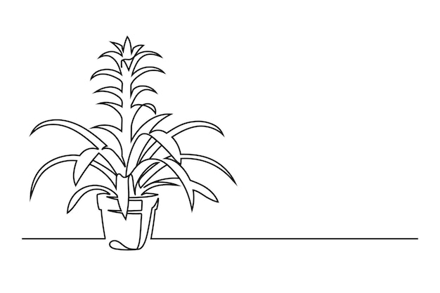 Continuous line drawing of a flower in a pot