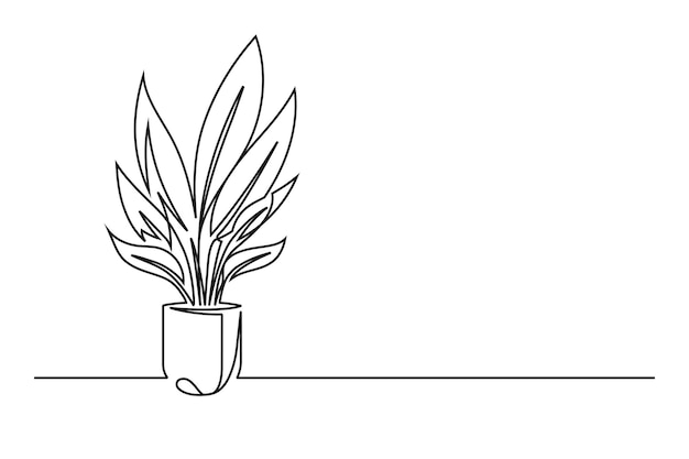 Непрерывный рисунок цветка в горшке