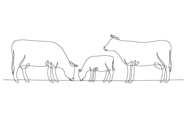 Непрерывный рисунок коровы и теленка, изолированные на белом фоне