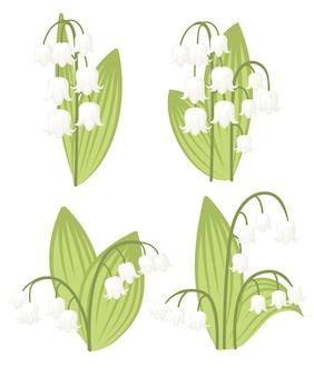 Convallaria majalis иллюстрация