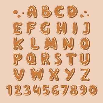 Cookie biscuit alphabet font  illustration.