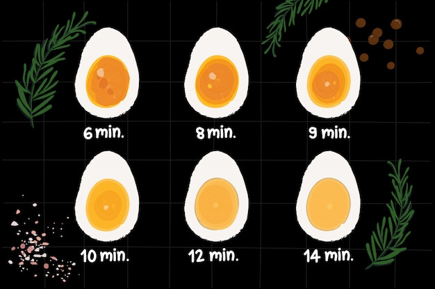 ゆで卵の調理時間と準備の度合い。ゆで卵をカットし、時間のラベルを付けます。トップビューセット