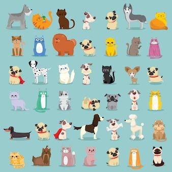 クールな猫、マウス、豚、犬。