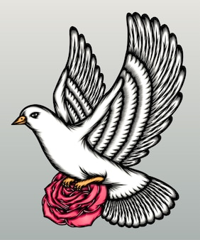 회색에 고립 된 장미와 멋진 비둘기