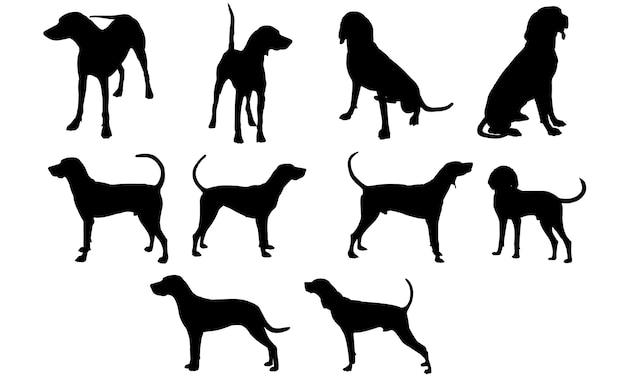クーンハウンド犬のシルエット