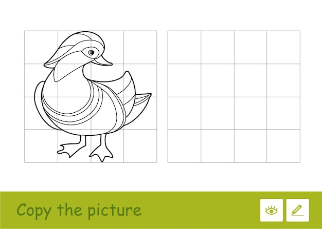 Copy the picture by squares and color it quiz learning children game with simple contour illustration of mandarin duck for the youngest children. fun and learning of birds for kids.