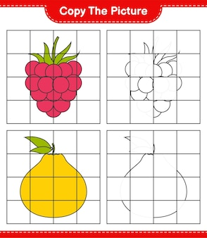 Copy the picture, copy the picture of fruits using grid lines. educational children game, printable worksheet