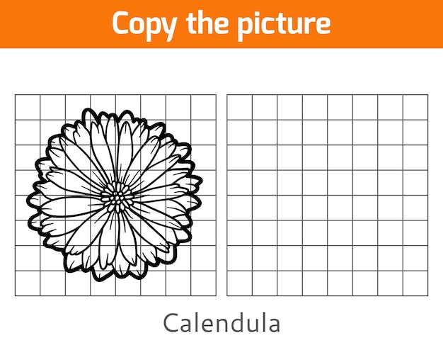 Copy the picture, education game for children, calendula