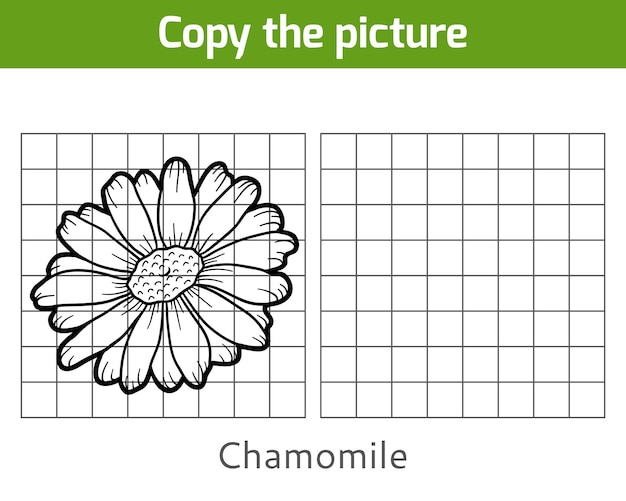 Copy the picture, education game for children, chamomile