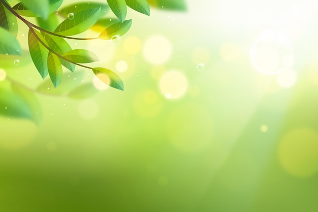 Copy space bokeh spring lights background