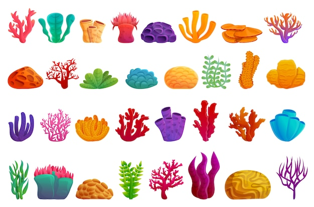 Coral icons set