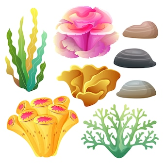 Coral reef collection set