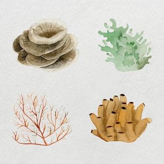 수채화 세트에 산호초