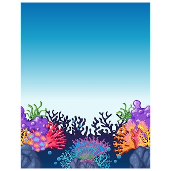 Corals background design